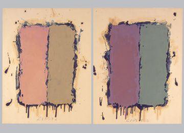 Extrait de série : Encres et pigments sur papier 101x65 cm 21/03/92