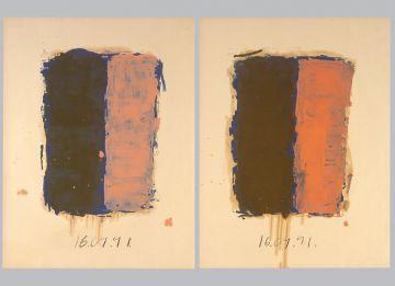 Extrait de série : Encres et pigments sur papier 101x65 cm 16/09/91