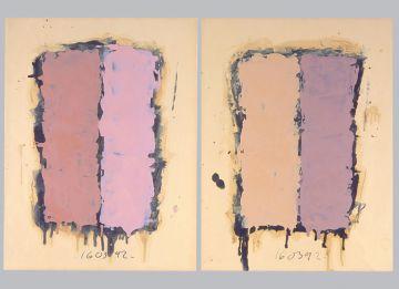 Extrait de série : Encres et pigments sur papier 101x65 cm 16/03/92